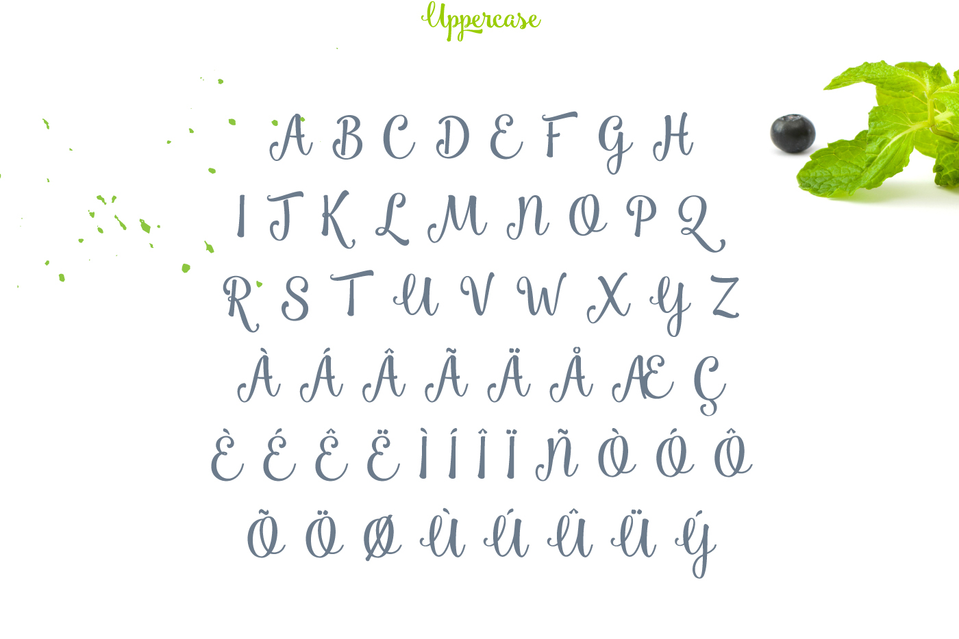 Free Script Font free font fonts freebie Free font free fonts Script Display brush handwritten creative inspiration download personal