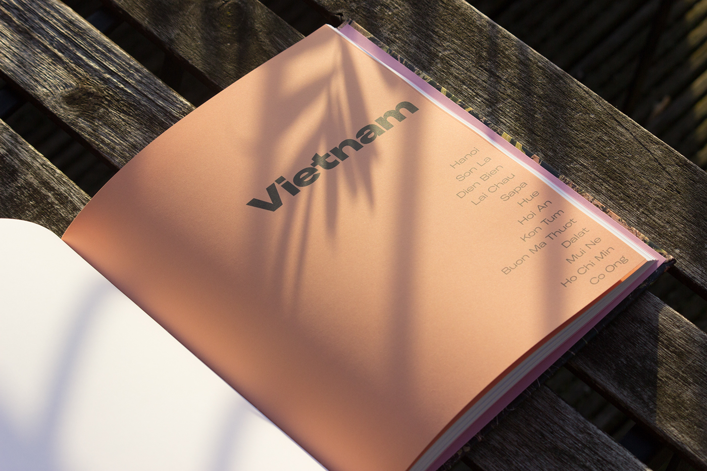 Travel book asia Nature Photography  book design Travelling pink pastel graphic design  bespoke