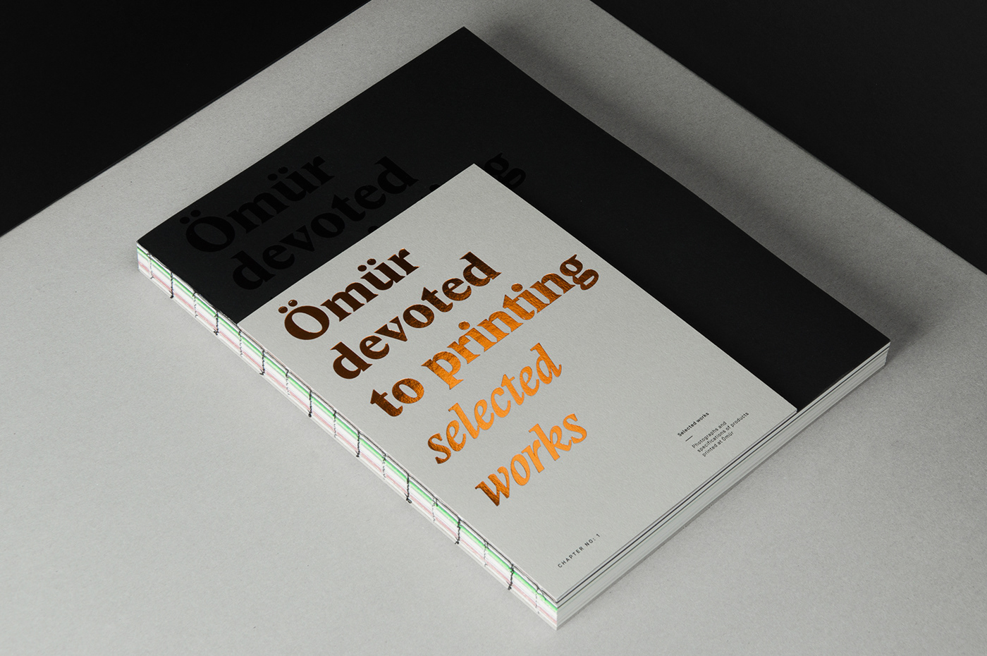 book Bookdesign catalog editorial editorialdesign foil InDesign Layout print typography