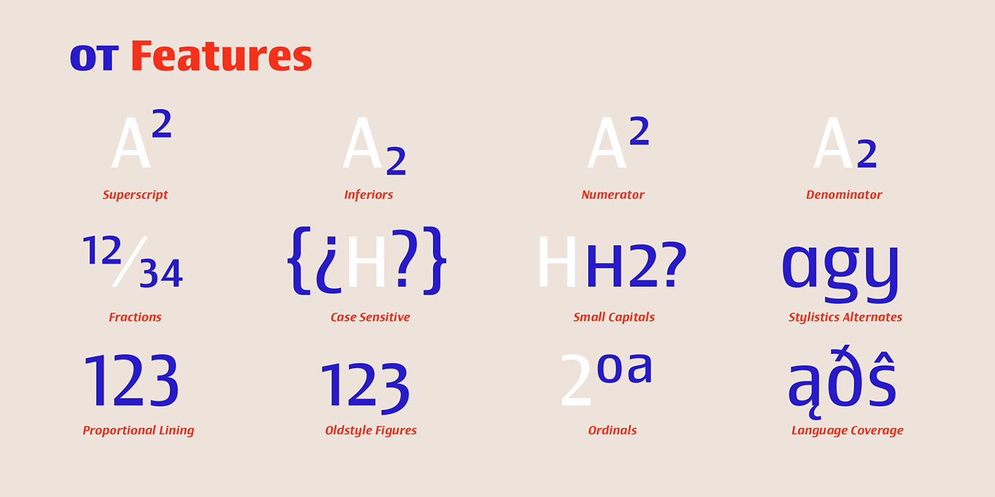 corporate branding  Typeface font Type System graphic design  sudtipos