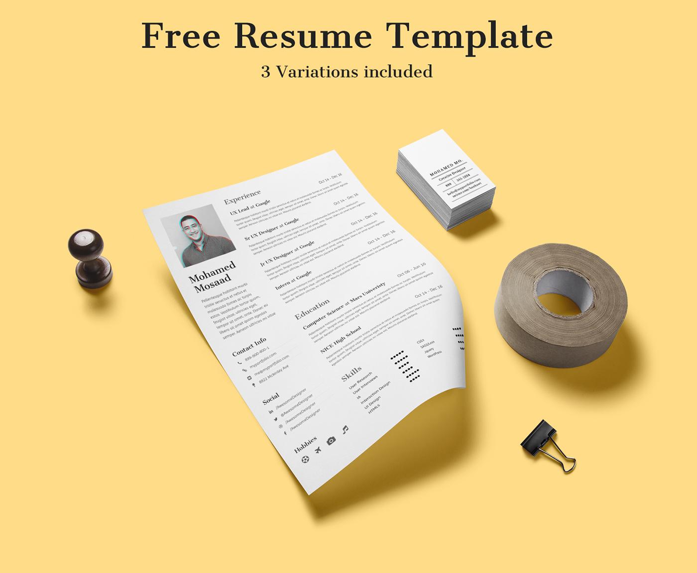 clean minimal Resume CV freebie Curriculum Vita curriculum Vitae download