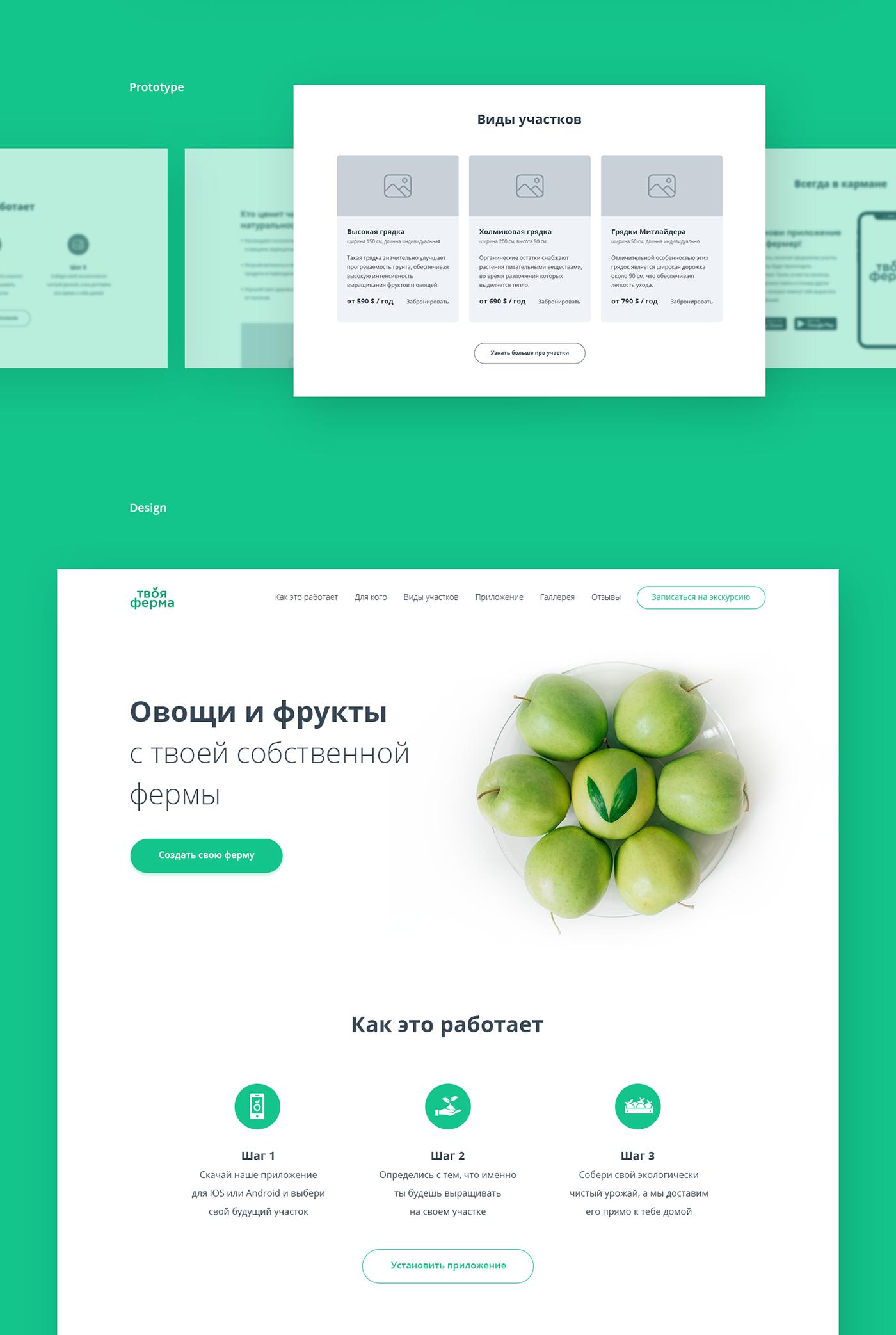 Webdesign Website Design landing page ux/ui design Interface green eco farm Food  Logo Design