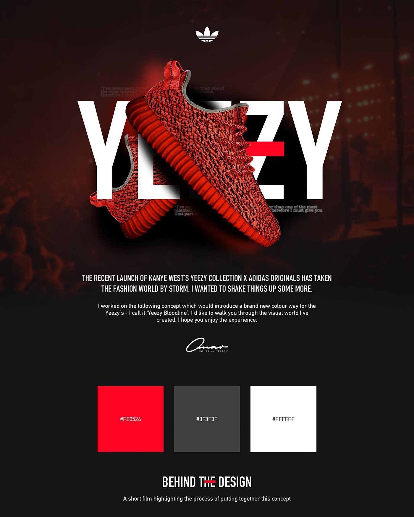 Yeezy Adidas Concept