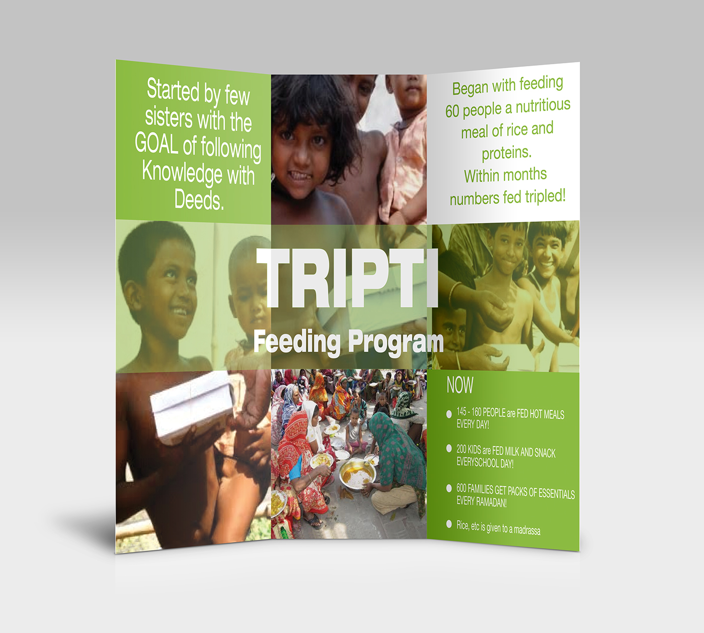 print flyer trifold borchure NGO green colorful Food  charity helping Workshop