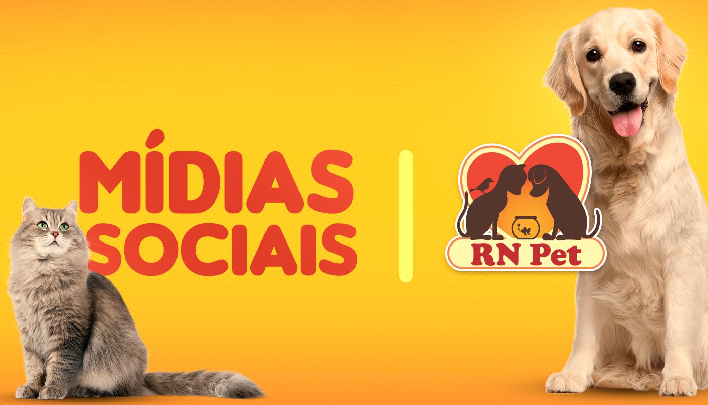 Pet dog Cat Pet social media social media cachorro petshop pet shop RN PET animals