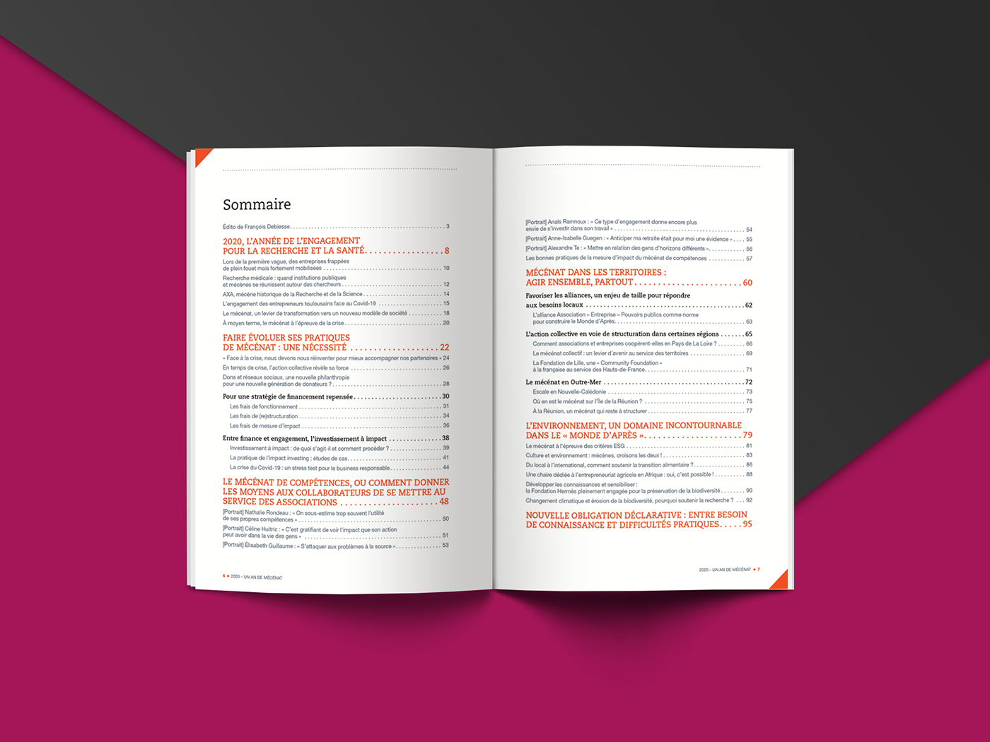 annuel Association corporate magasine mécénat mécène data visualization InDesign infographic magazine