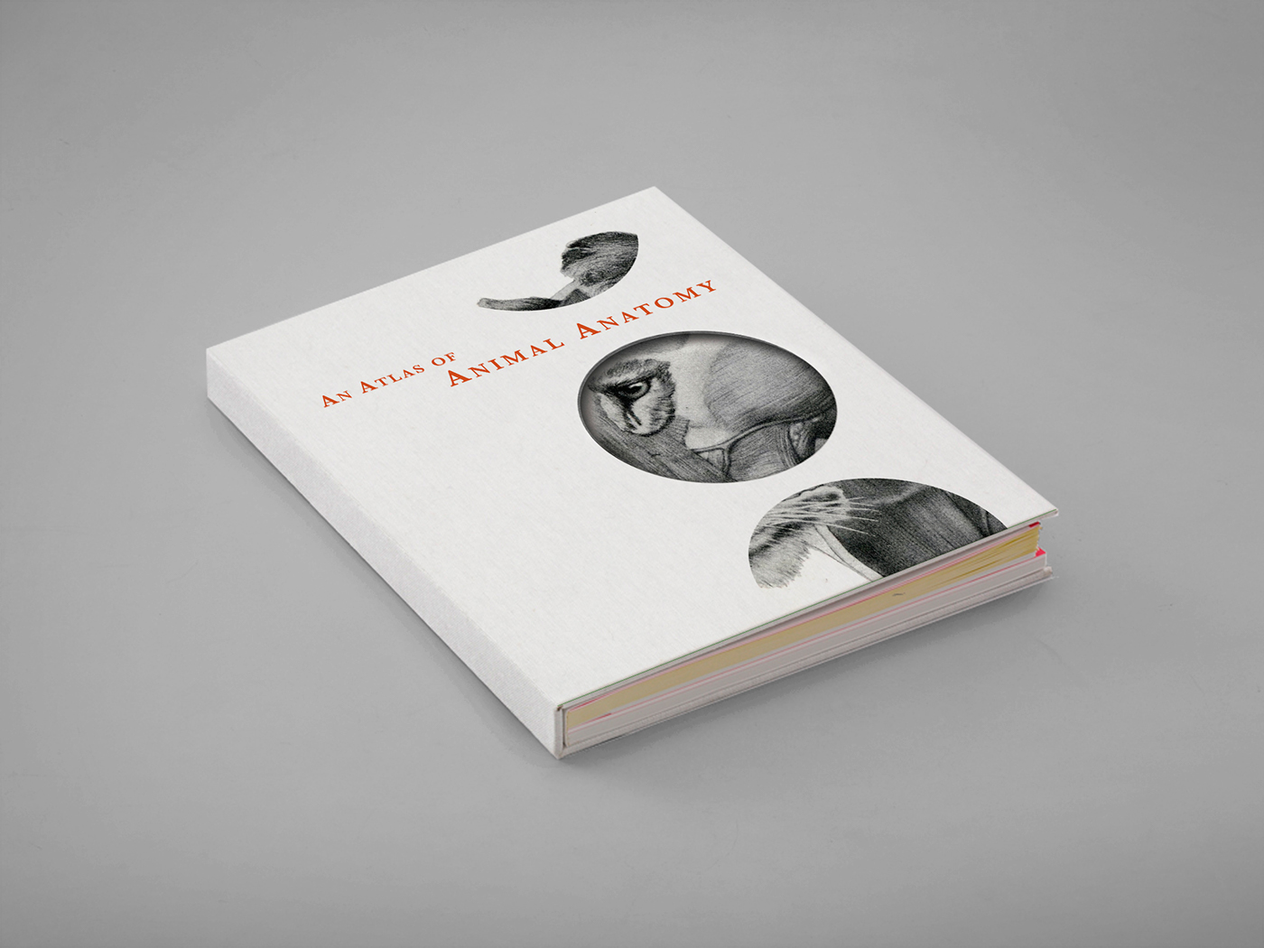 An Atlas Of Animal Anatomy Coffee Table Book On Behance