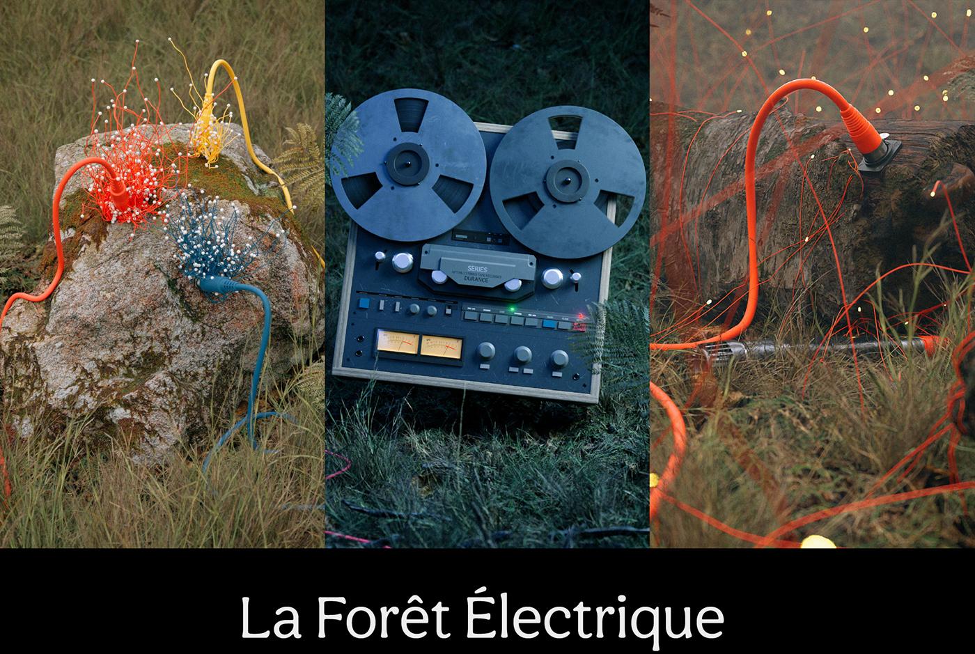 forest Foret Electrique MegaScans Nature nft octane xparticles