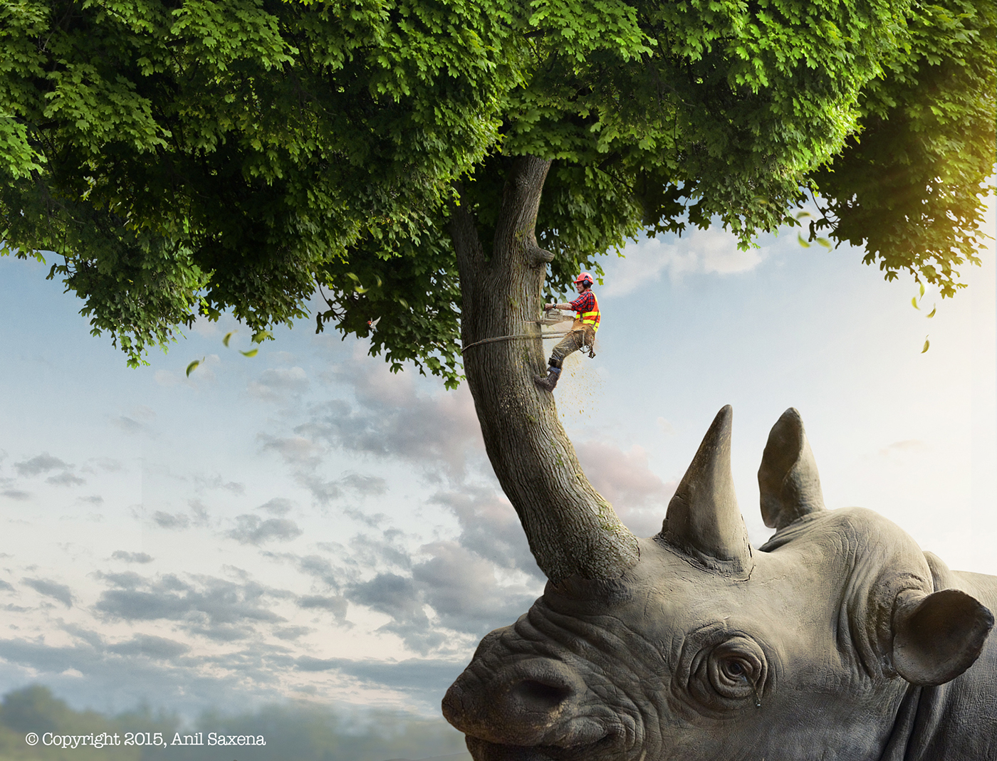 save trees save animals on behance
