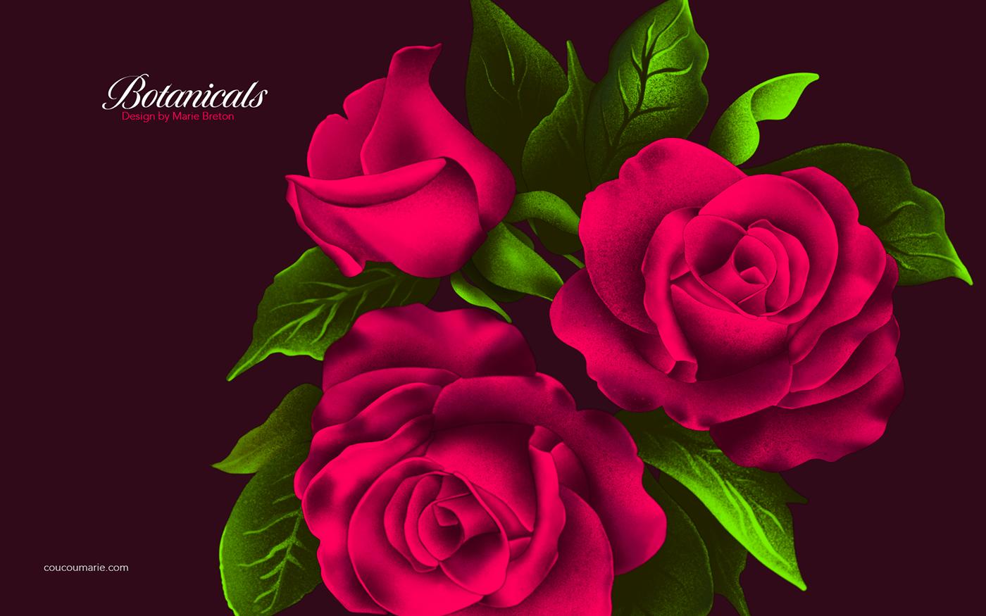 Composition florales en illustration sur procreate