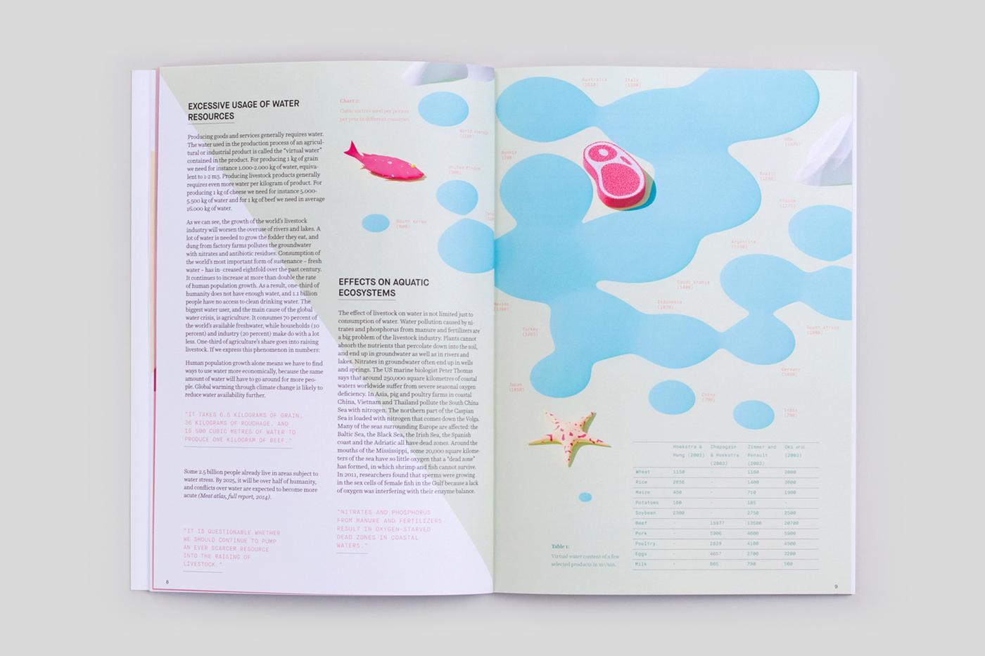 editorial design  ILLUSTRATION  infographic Colourful