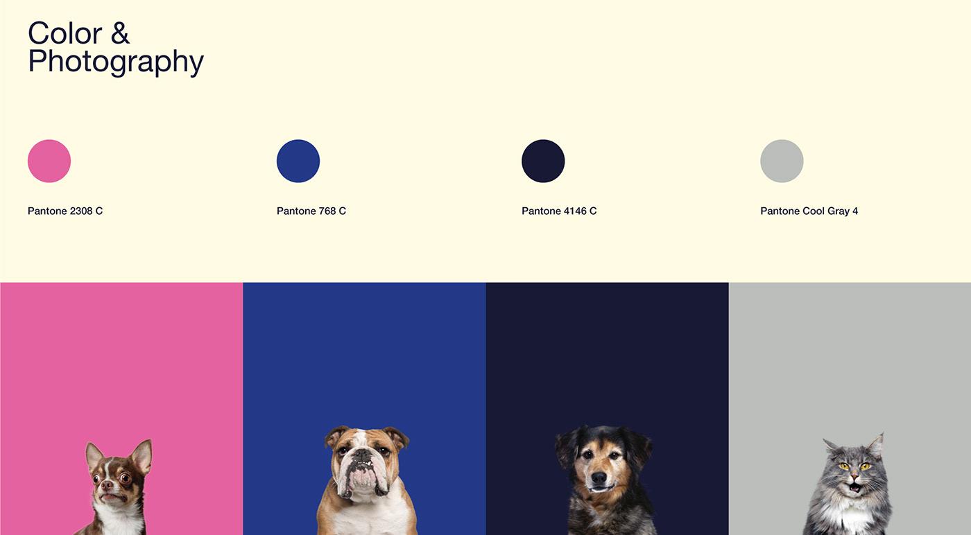 adobe illustrator brand brand identity branding  design graphic design  Packaging packaging design photoshop product