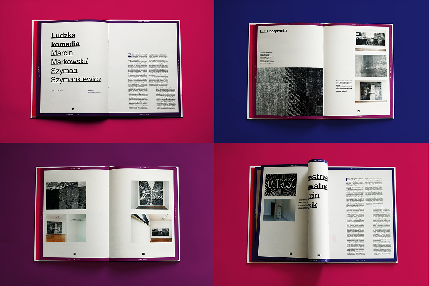 book catalog graphic design  printed gallery Layout publication book design