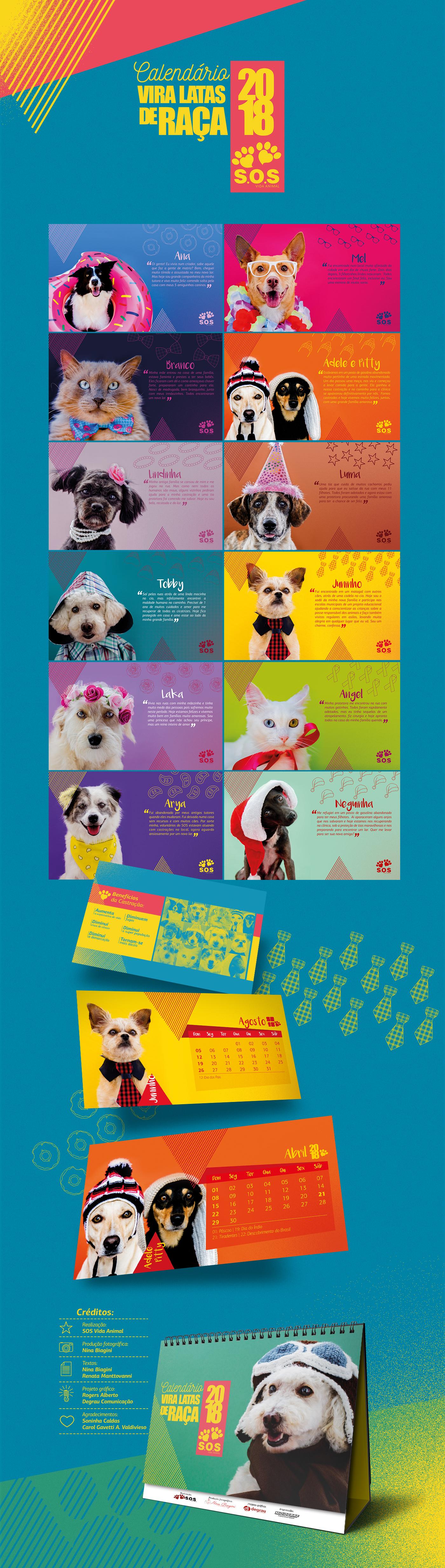 calendar calendario calendario 2018 brochure SOS Vida Animal design editorial design gráfico adobe campanha Advertising