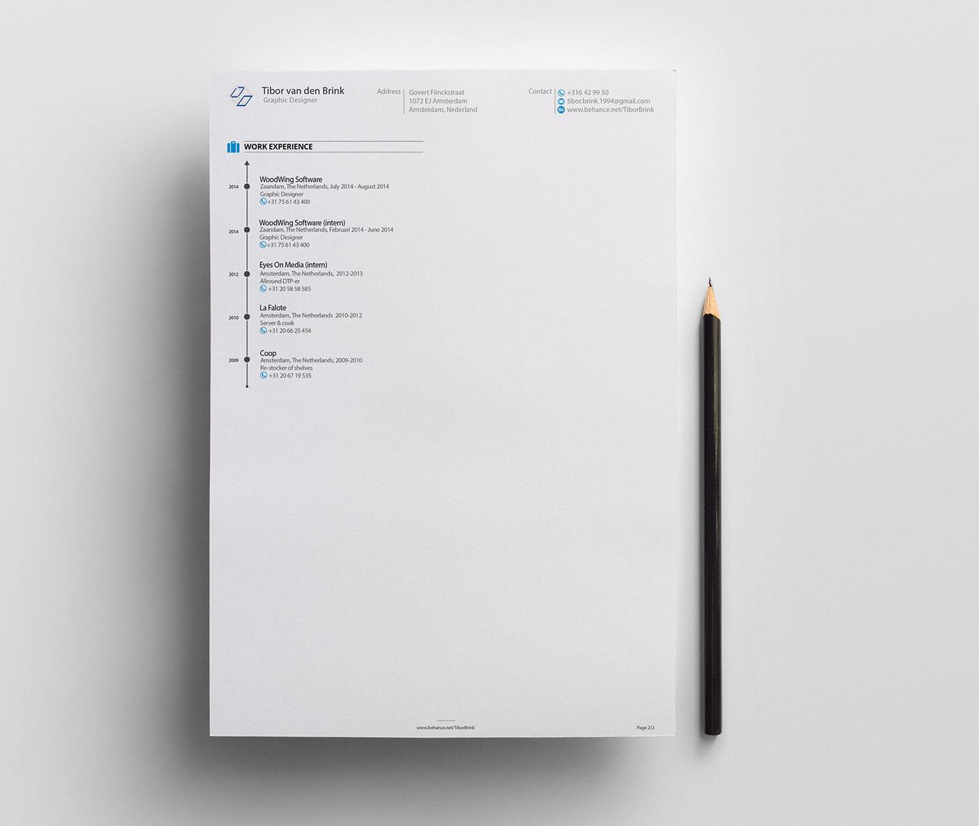 Resume CV brand Promotion Self Promotion resume mock-up Curriculum Vitae creative tibor brink infographic personal