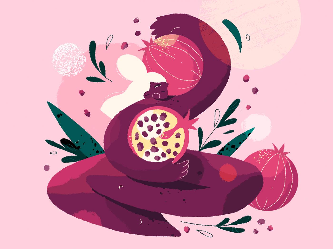 fruit ladies Fruit Lady pomegranate watermelon cherry banana Character design  photoshop ILLUSTRATION