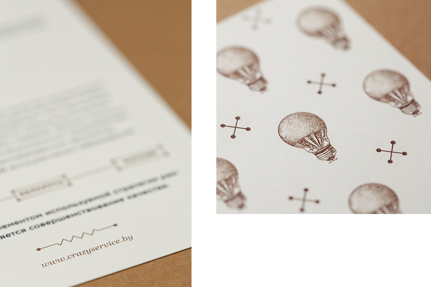 branding  Insects ILLUSTRATION  graphic design  identity logo electric Lightbulb Packaging bugs