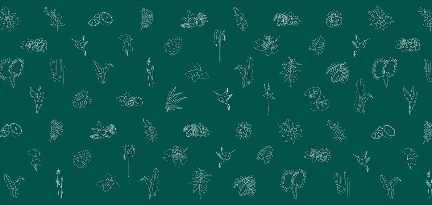 3D Cosmetic jungle Label Nature plants setdesign soap Sustainable Vectorillustration