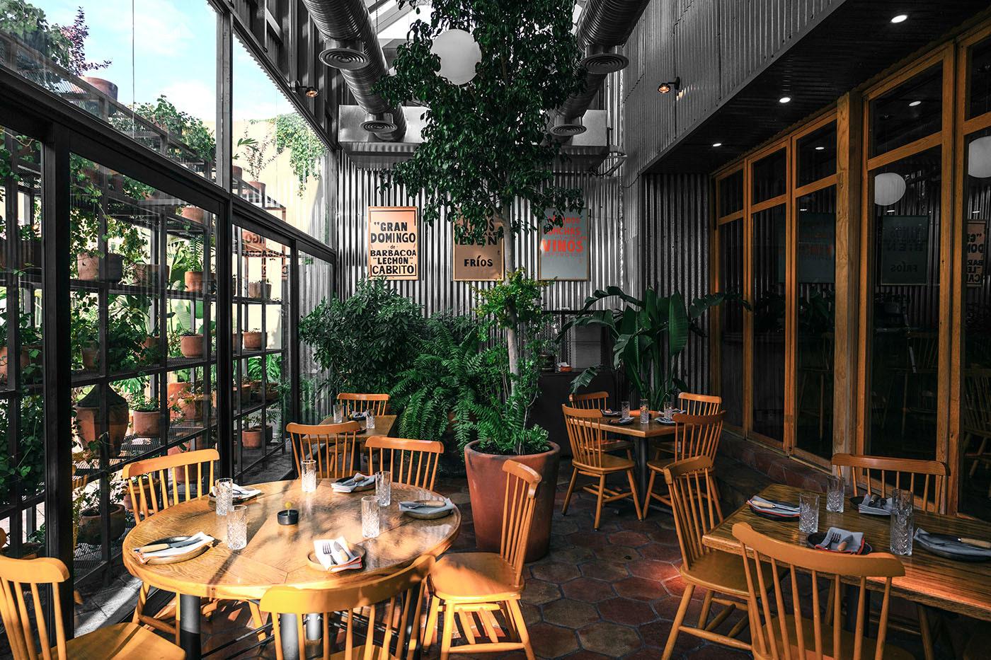 architecture bar design interior design  mexico monterrey OpenTheme plants restaurant Scandinavian design