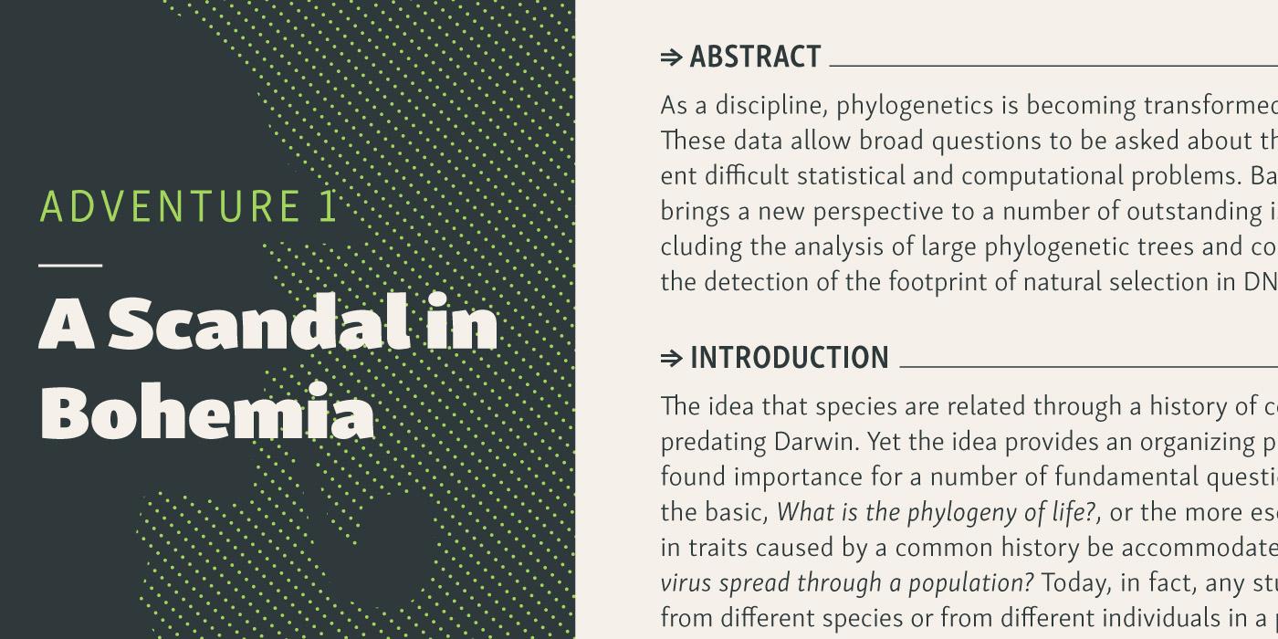 Typeface skolar font type rosetta david brezina foundry sans family Responsive large simple Web