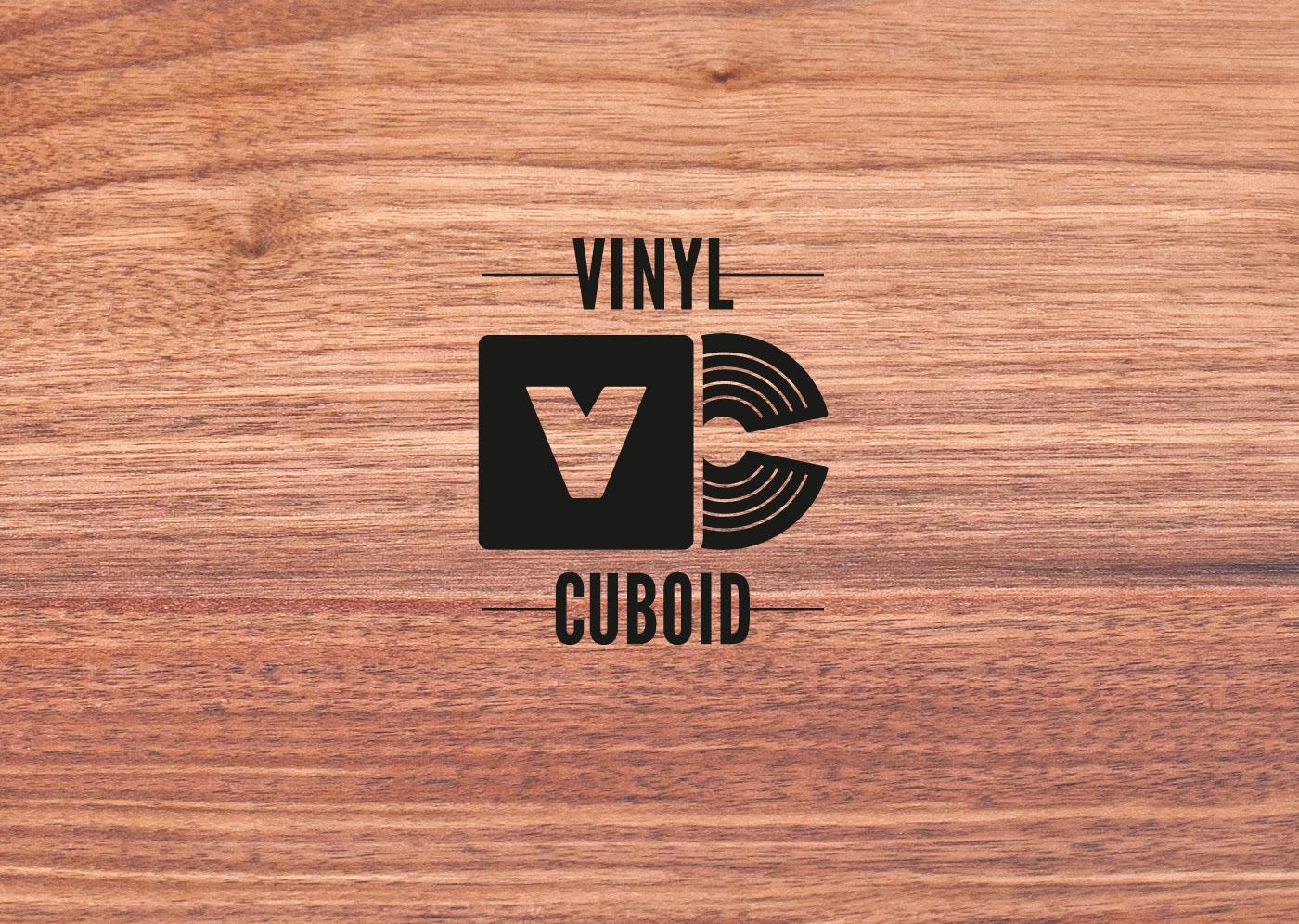 vinyl Shelf storage wood Magnetic package music