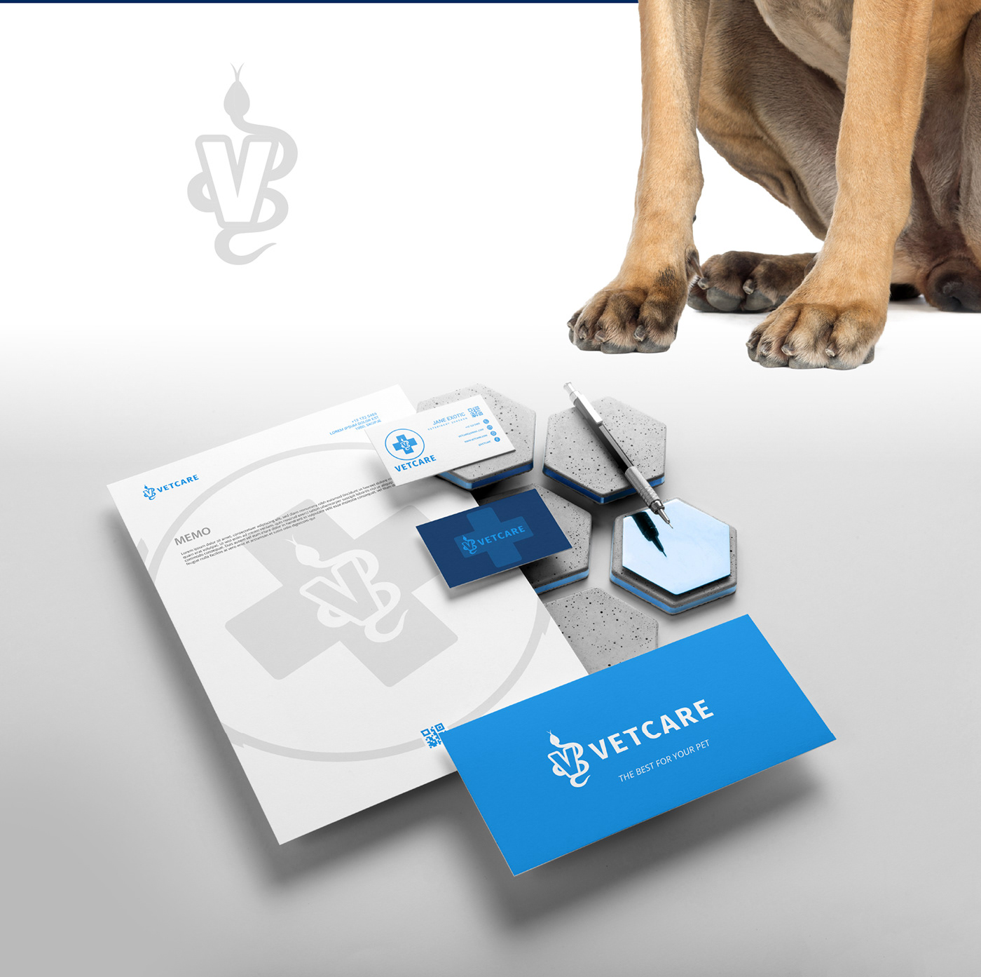 veterinary care stationary branding