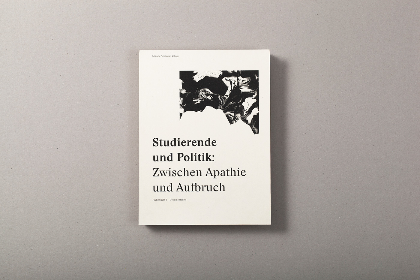 research politic society Layout typography   graphic editorial student münster FH Münster