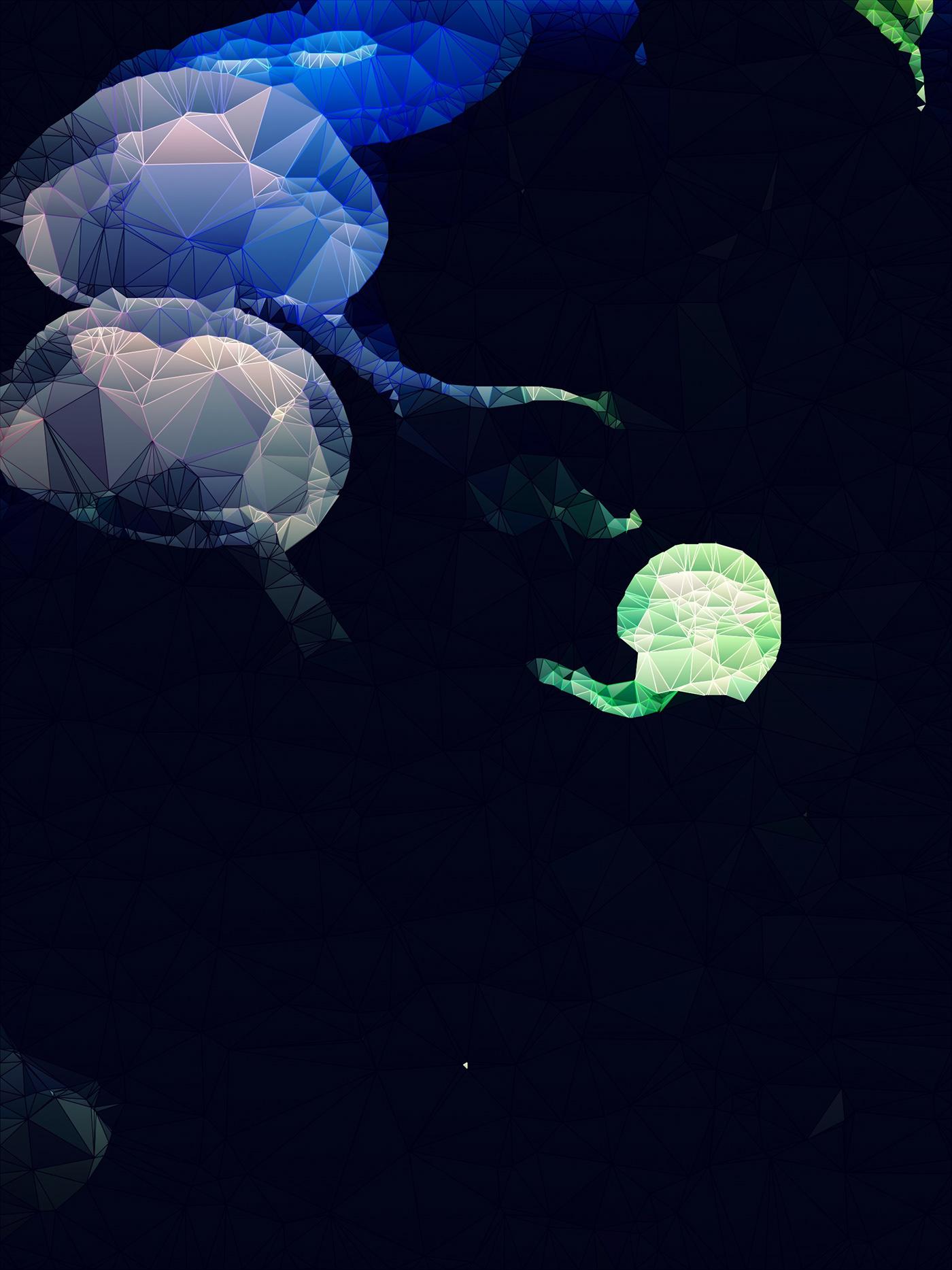 jellyfish art Photography  Düsseldorf polygone
