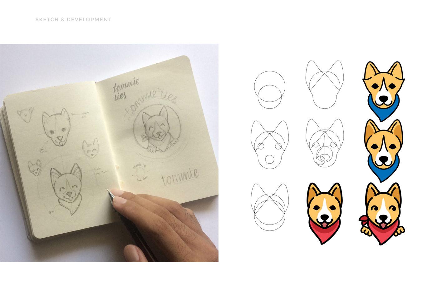 logo Logo Design branding  Bandana dog Corgi Startup