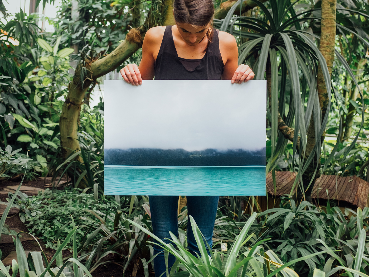 Website print unsplash artprint wallart poster Photography  giclee