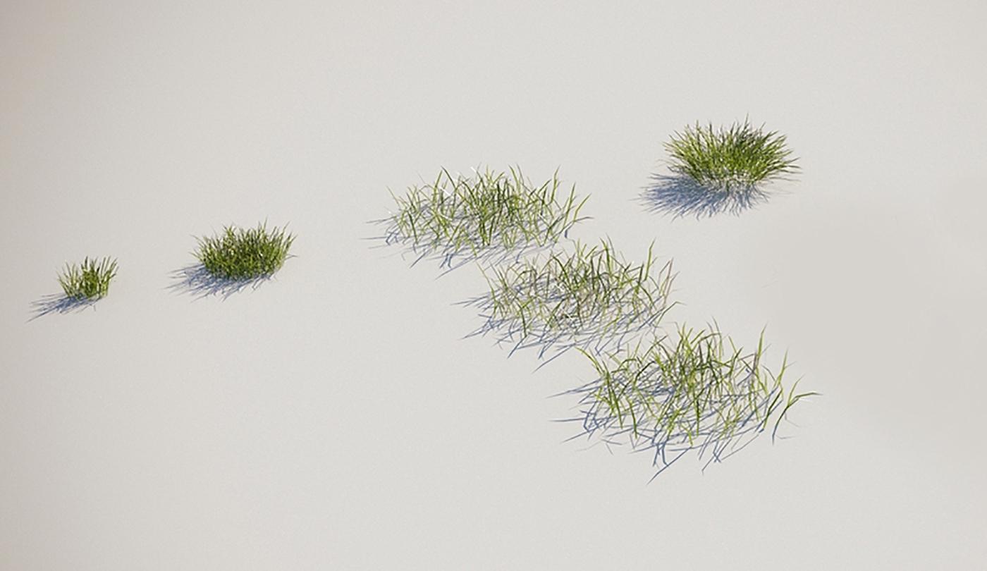 grass rendering meadow rendering meadow asset grass asset grass model meadow model scattering Cinema 4d Model cinema 4d corona