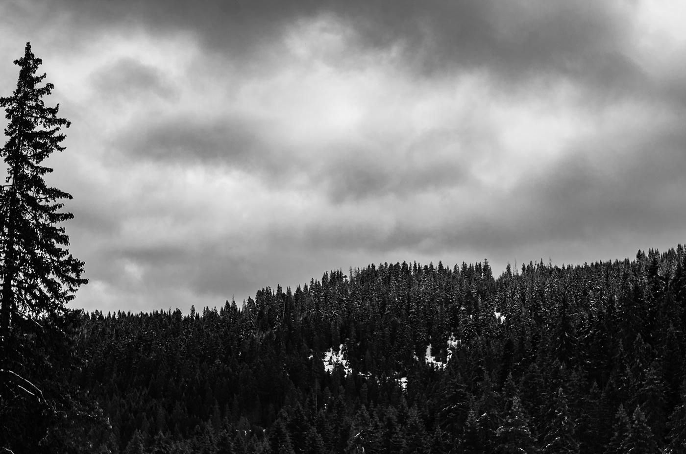 Low Cloud.
