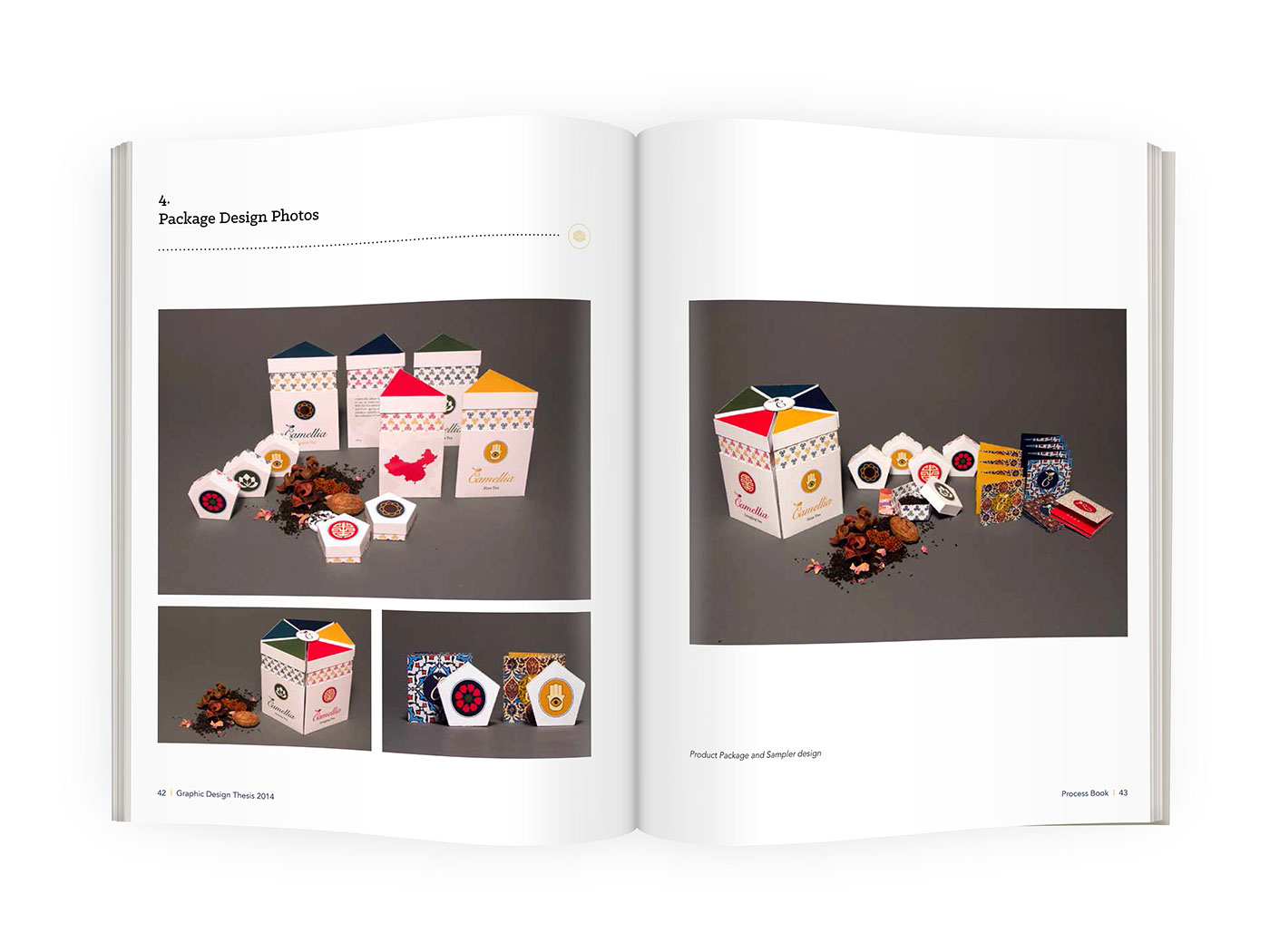 graphic design thesis book