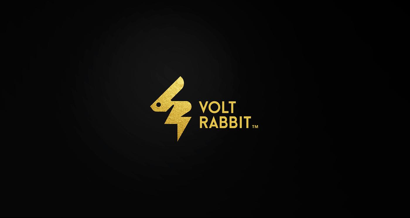 Radek Blaska RadekBlaska.com logo design VOLT rabbit VotRabbit brand mark symbol minimal designer