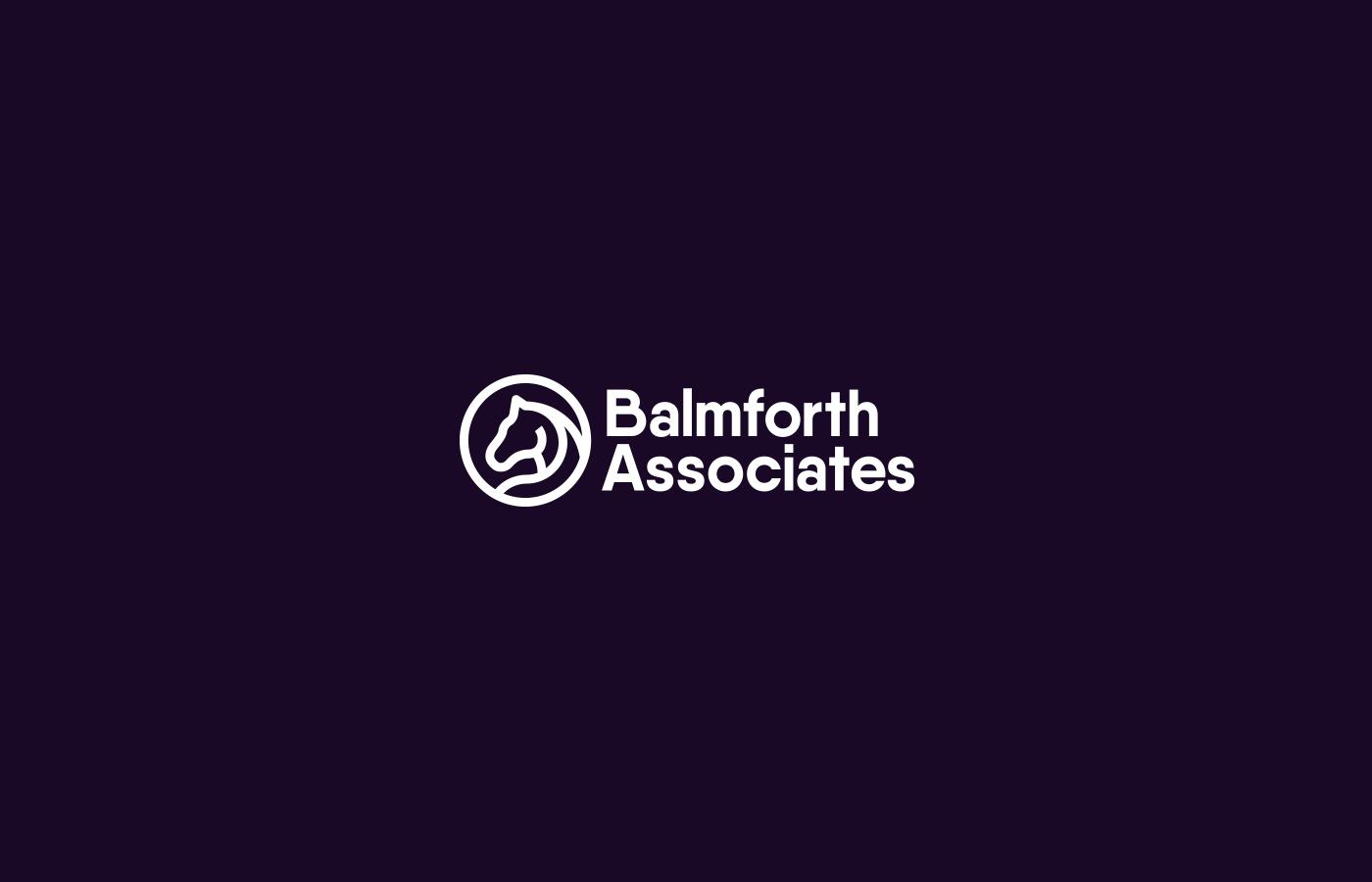 horse accountant finance purple cyan Stationery Website
