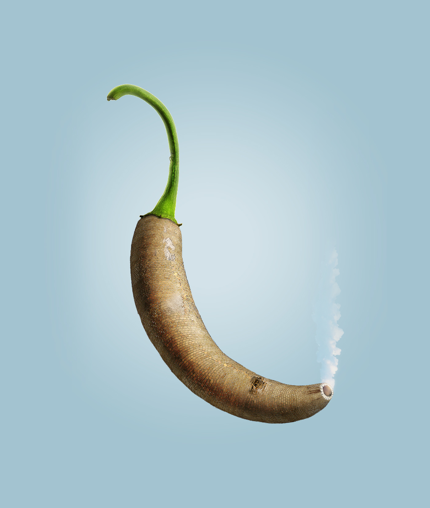 Chili Pepper,digital illustration,photo editing,Photo Retouching,spicy,Kirio,HIBO