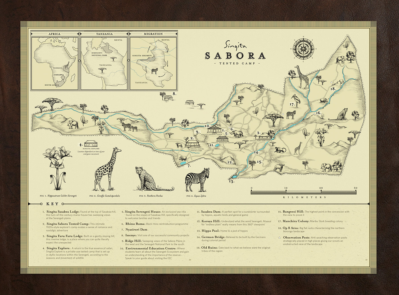 illustrated map branding  Collateral cards print Tanzania south africa Safari Design hotel Hospitality