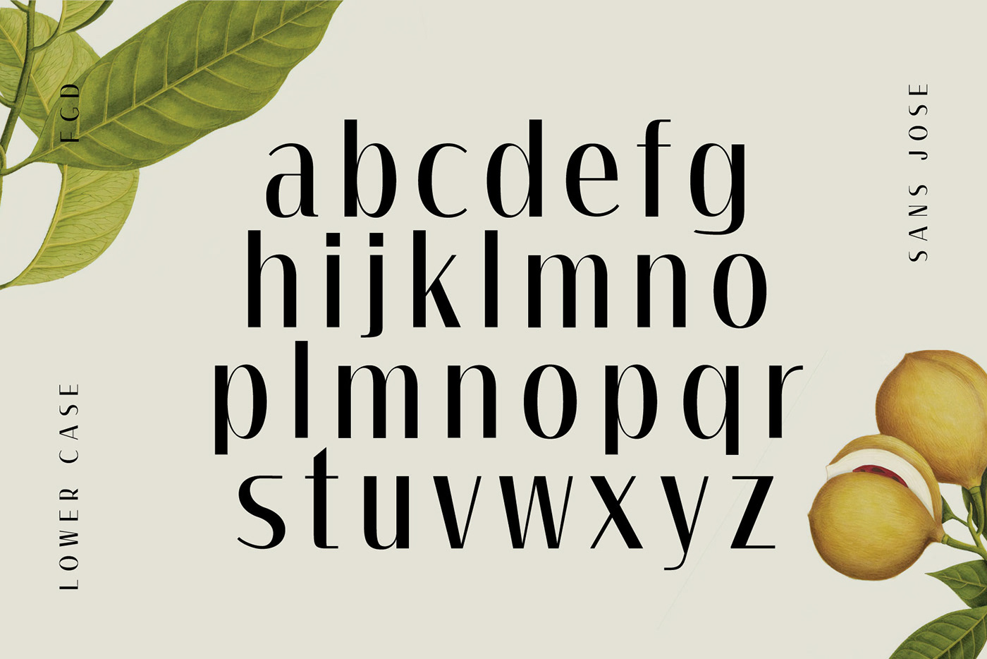 type,typography  ,font,fonts,freefont,free