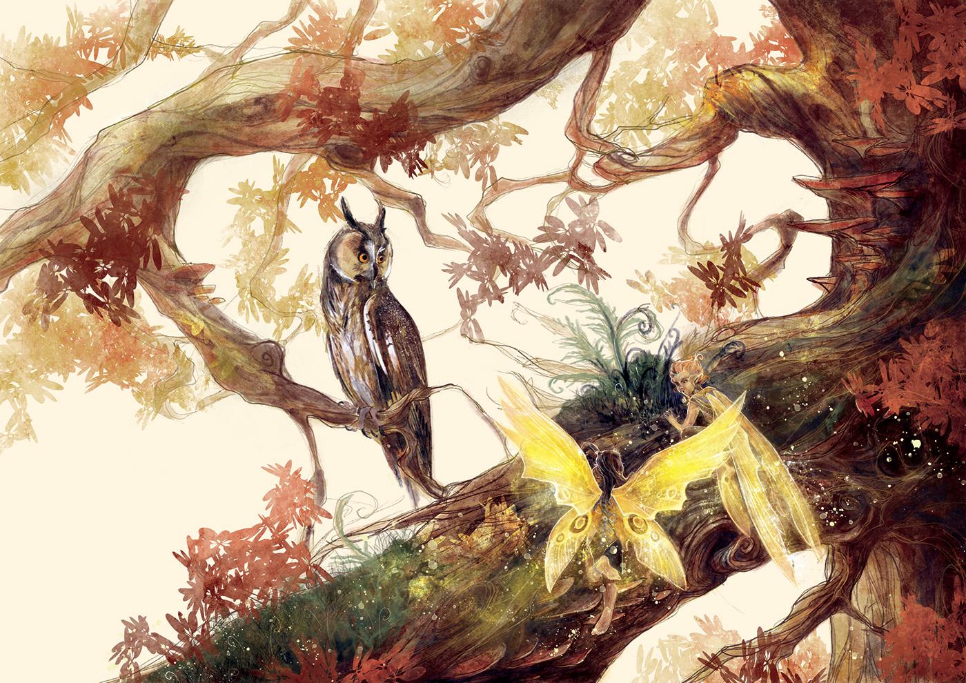 fairy forest Magic   narrative owl scene story trees