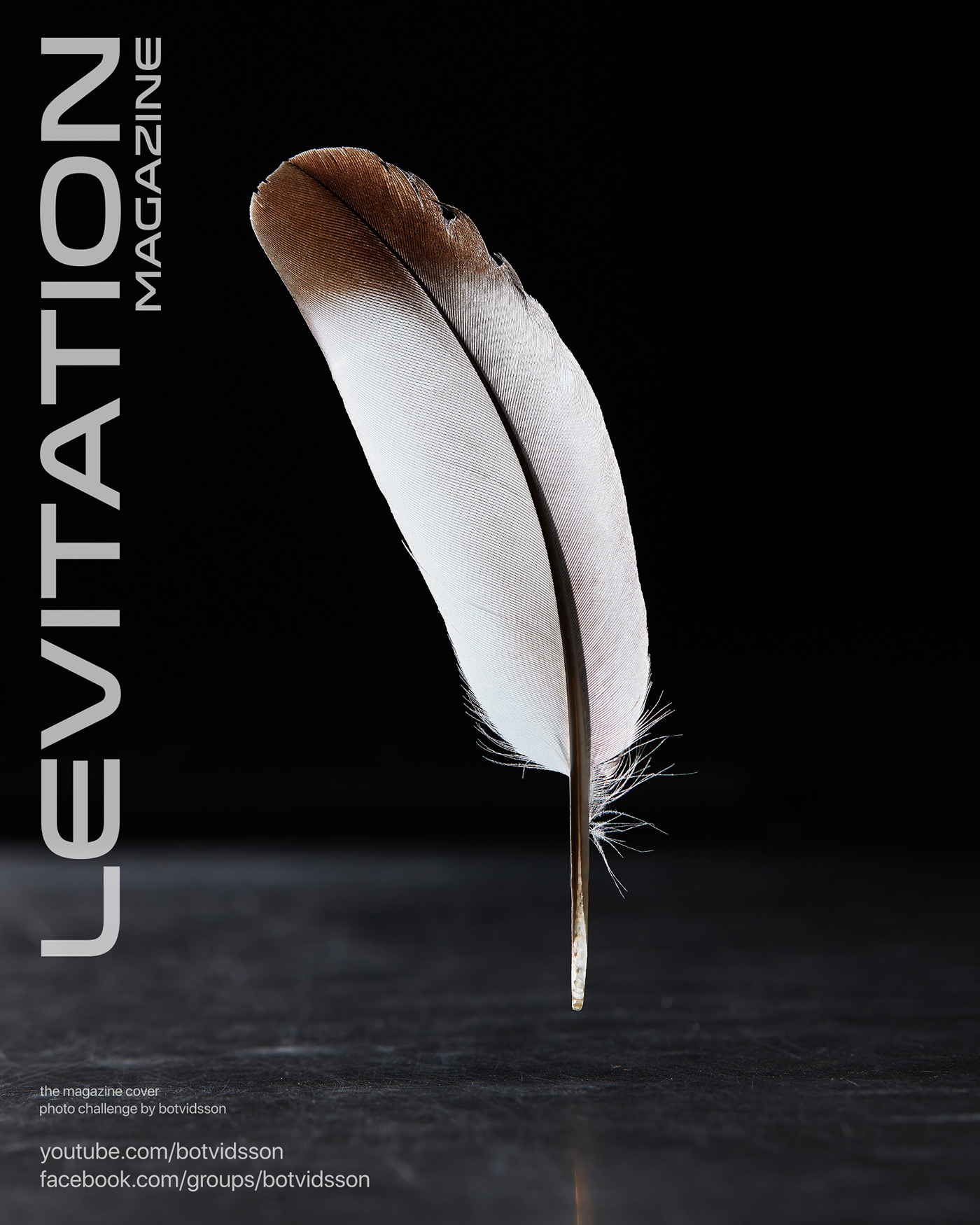 cover feather levitation magazine Product Photography