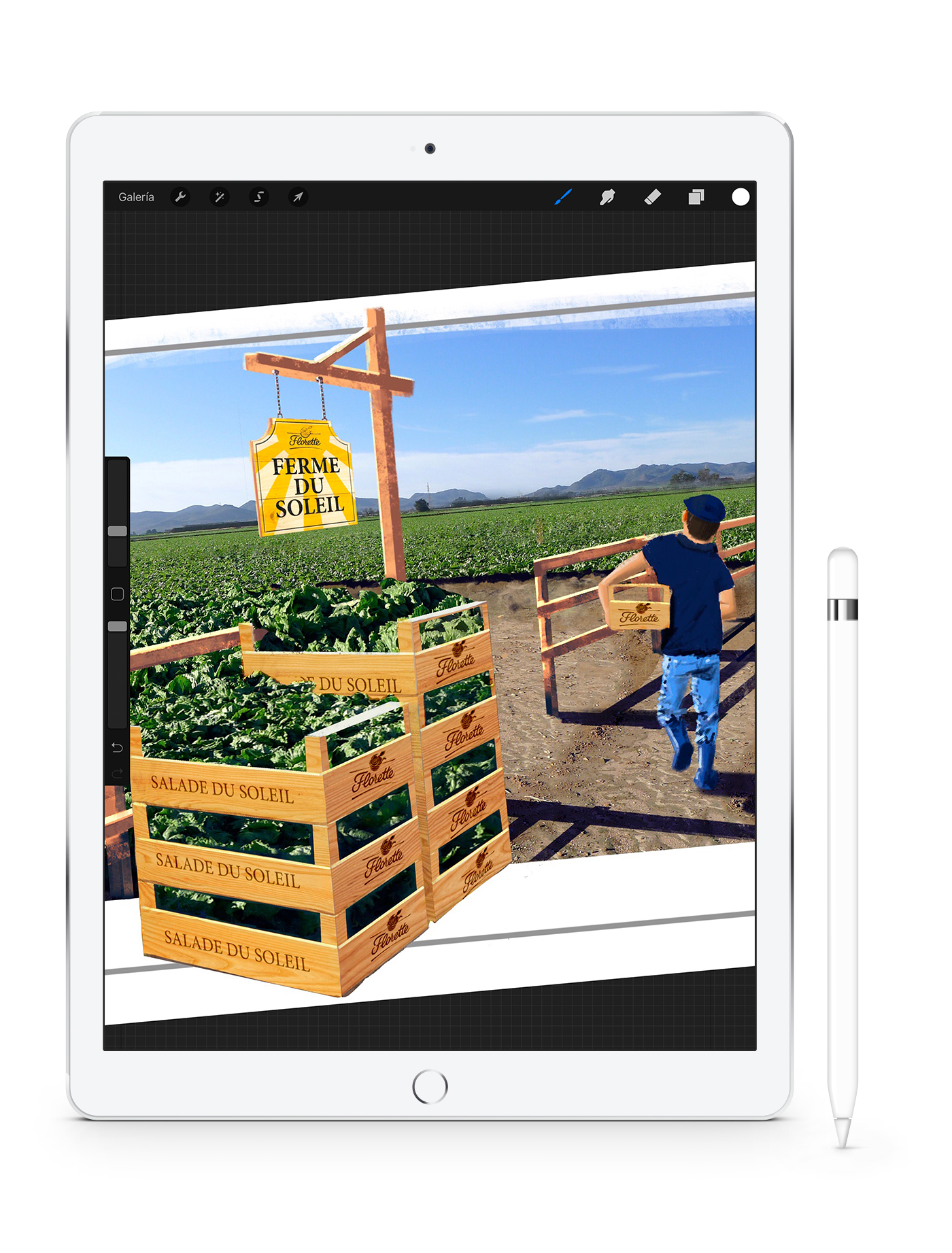 Spot Florette apple iPad Procreate PPM publicidad ilustraciones illustrations