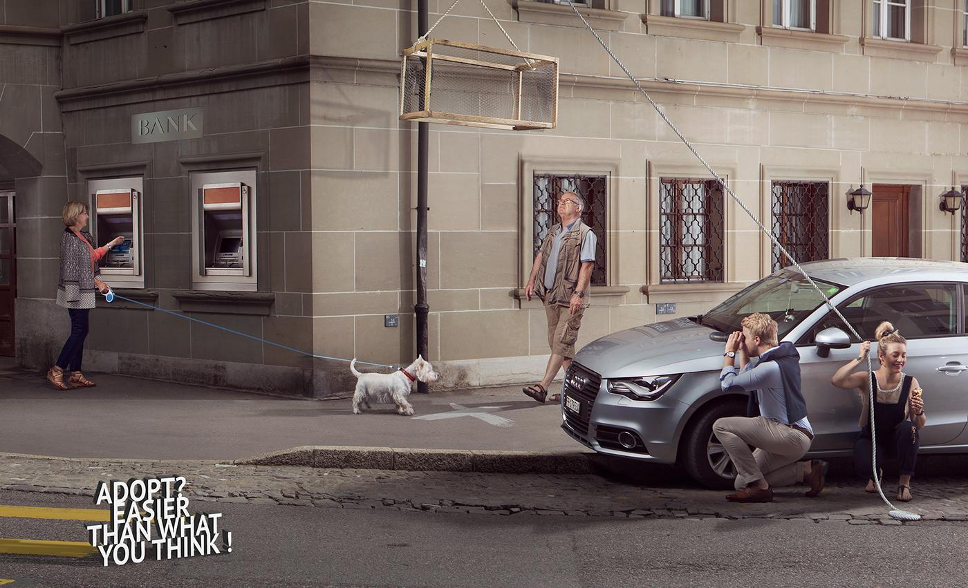 Advertising ,campaign,animals,swiss,onlocation,adopt,dog,people,Switzerland,scenario