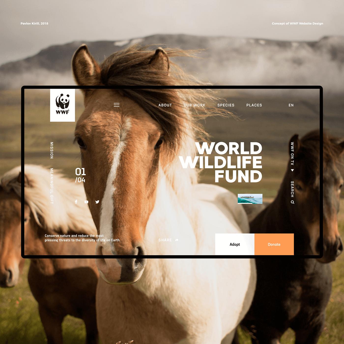 UI ux Nature concept WWF Webdesign animals