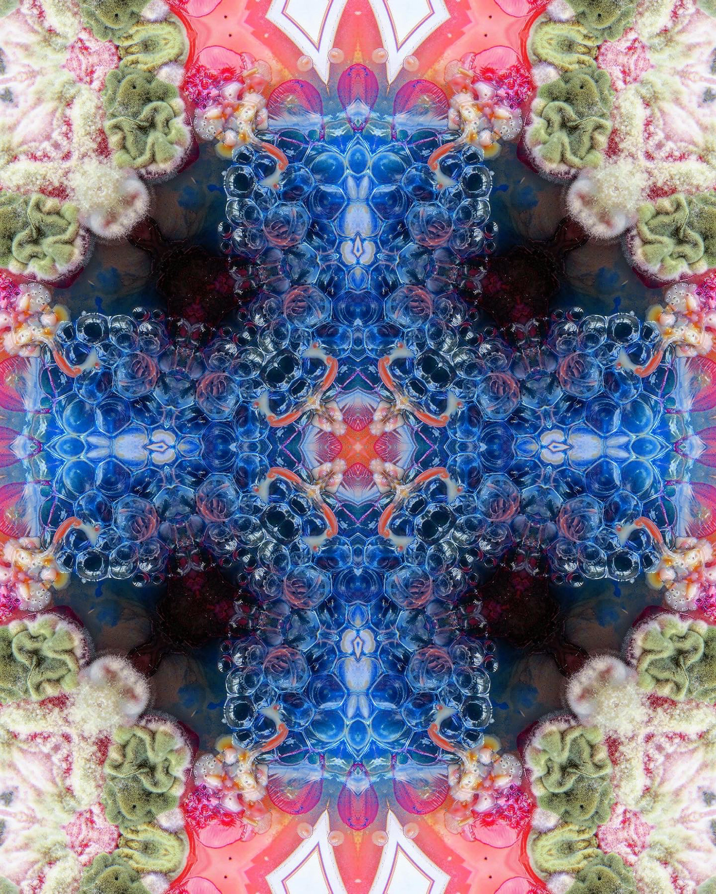 art artist Bacteria bio bioart blue colours contamination design FINEART fluffy fractal Fungi glass green Greens inspiration Interior kaleido Love manipulation mirror model molds moodboard Nature new pattern pink science texture wallpaper Window