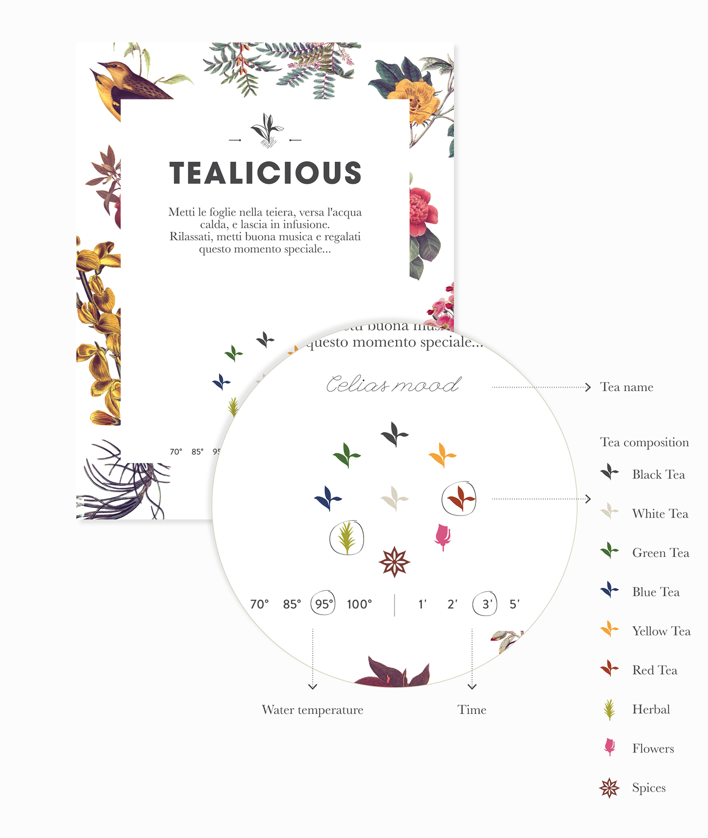 Tealicious illustrations and branding by Alvarez Juana