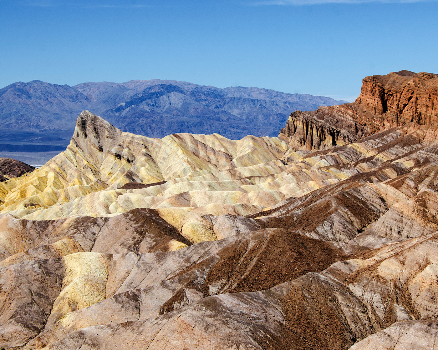 desert landscapes national parks
