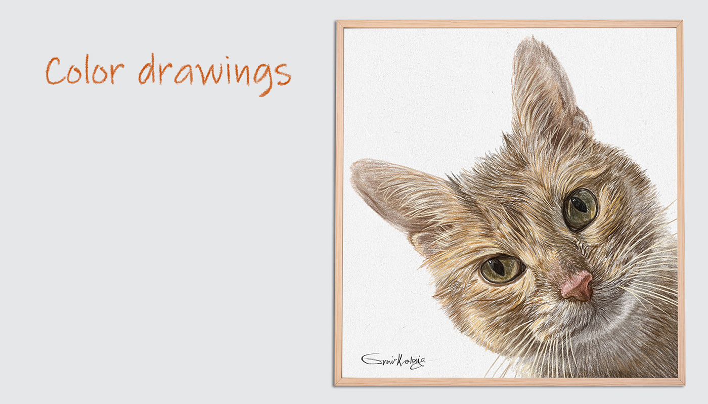 Custom cat portrait,Custom dog portrait,Custom Pet Portrait,Personalized gift,Portrait from photo,Dr