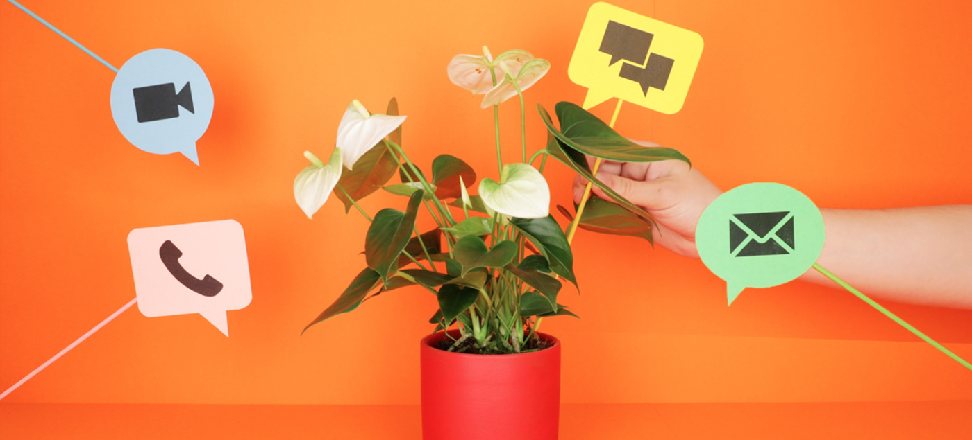 stop-motion realisation colorful paper video animation  stop motion art direction  colors