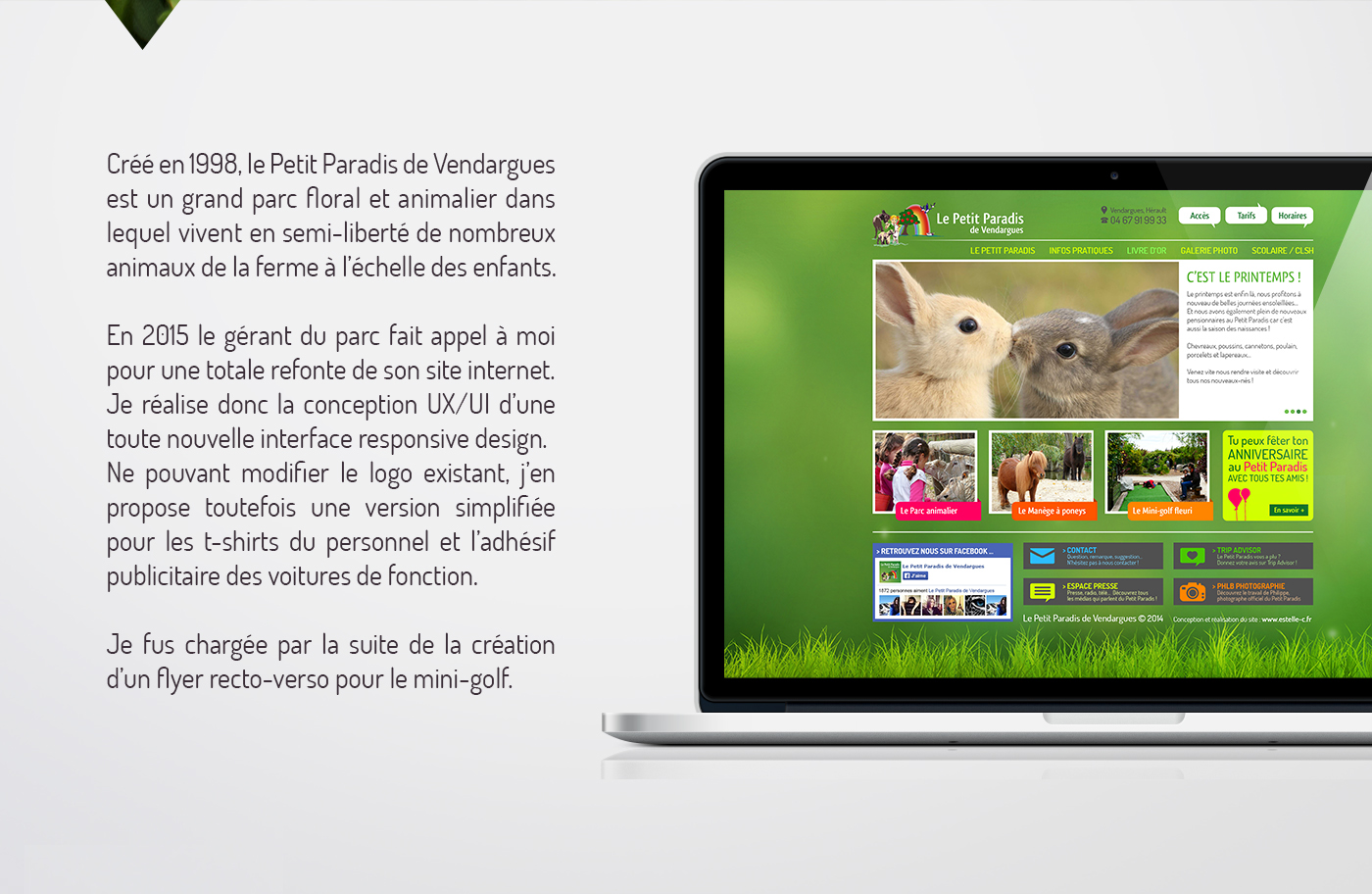 ux UI Website Responsive Design Webdesign graphic design  print flyer chilhood