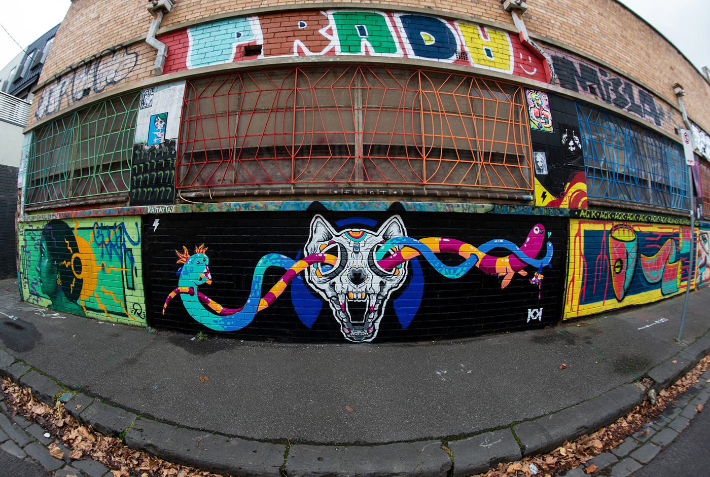 cartoon cats ILLUSTRATION  Melbourne Mural painting   Pizza skulls Street Art